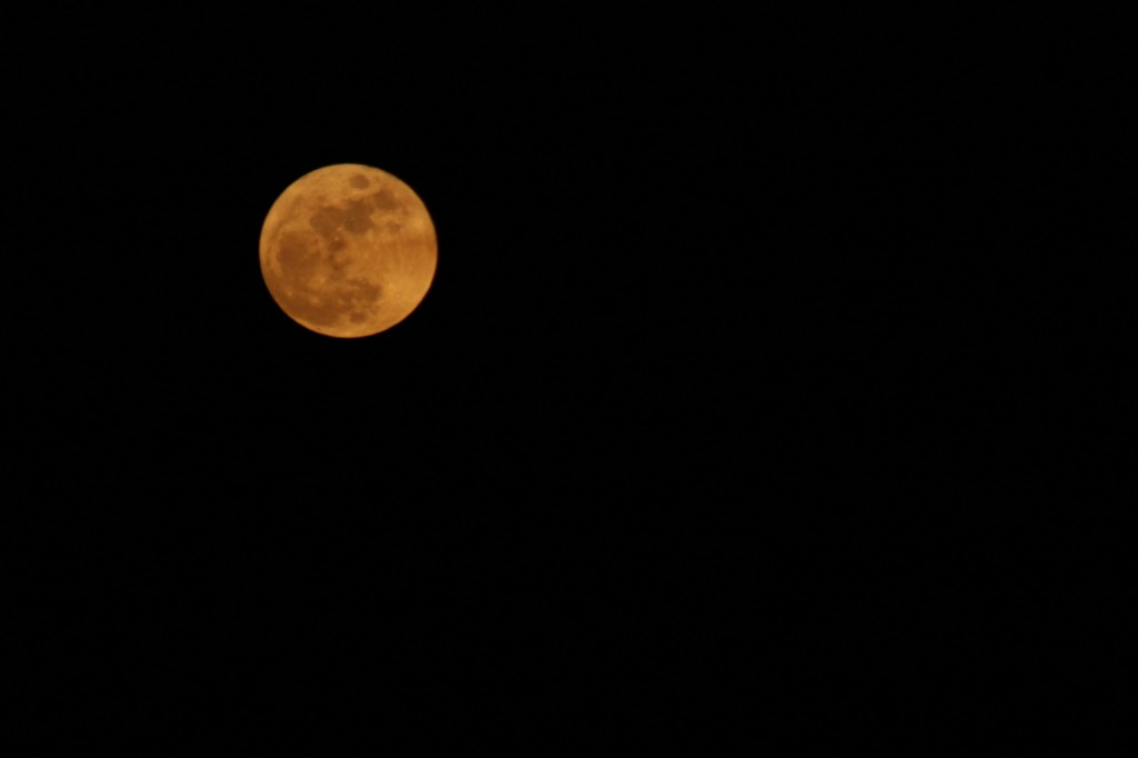 Moon 1024x682 Weekly Winners{Golden Moon}