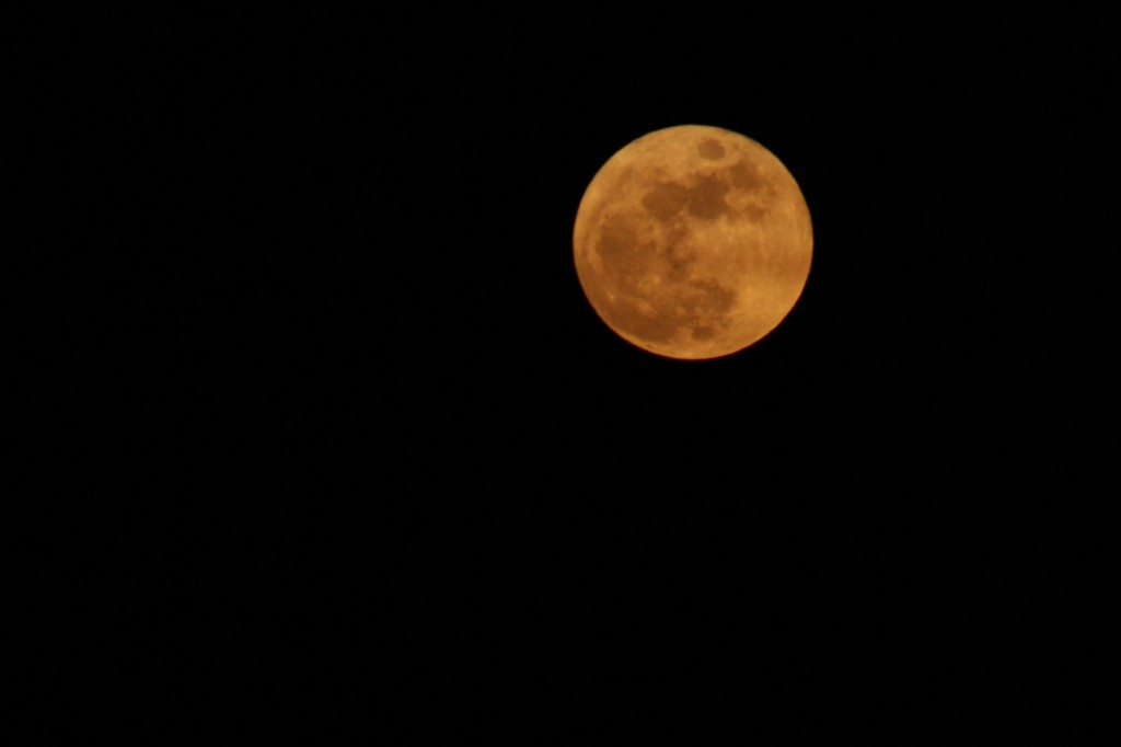 Moon 4 1024x682 Weekly Winners{Golden Moon}