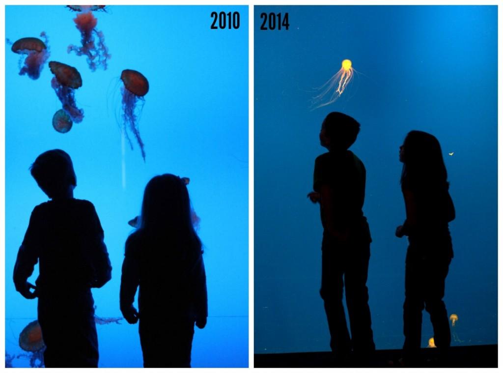 2010 & 2014